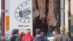 French farmers check the load of a lorry transporting meat as they block trucks that transport food goods coming from foreign countries at the French German border in Strasbourg