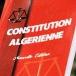 «Algériens pure souche» et «Algériens de pacotille» ….. L'Algérie a tranché, avec l'article 51 !