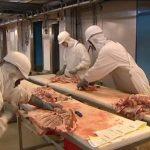 France: la fin programmée de la production de viande