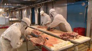 découpe-viande