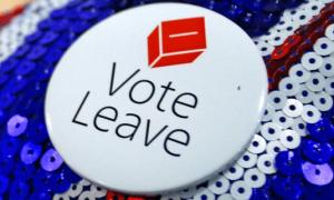 Vote-leave-badge