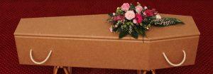 cerceuil-carton