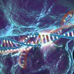 Nick O'Connor: Avec CRISPR, misez sur l'invention scientifique la plus importante du 21ème siècle