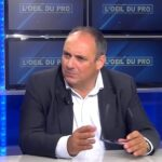 """Olivier Delamarche: Législatives: """"Je recommande de fiche le camp des marchés et d'aller sur des actifs physiques"""""""