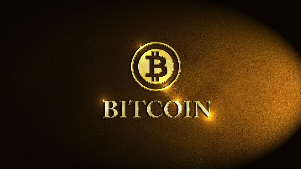 Simone Wapler: Concrètement, le bitcoin…