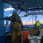 Pour Le Drian, Français et Anglais vont s'étriper sur… la pêche