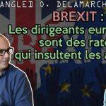 """Olivier Delamarche: """"Y a plein de peuples qui vivent en dehors de l'Euro et qui se portent très bien… Merci Madame La Marquise !!"""""""