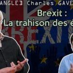 """Charles Gave: Brexit: """"Le peuple britannique a décidé quelque chose et les élites ont décidé qu'il ne l'aurait pas !"""""""