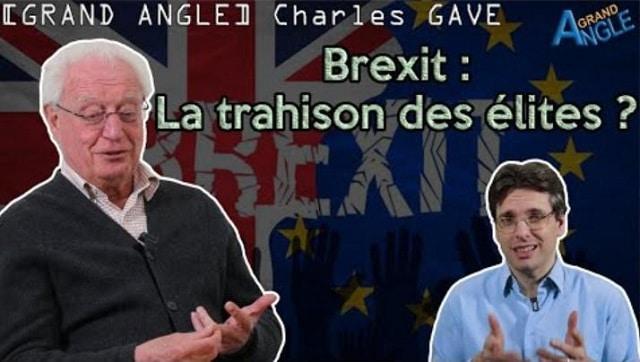 """Charles Gave: Brexit: """"Le peuple britannique a décidé quelque chose et les élites ont décidé qu"""
