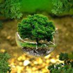 Pas de transition écologique sans crise ni krach financier… Avec Charles Sannat