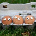 « têtes d'œuf anonymes » le « brillant » discours contre la haine à l'Assemblée Nationale.