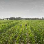 Agriculture: inquiétude sur la baisse des dotations annoncée