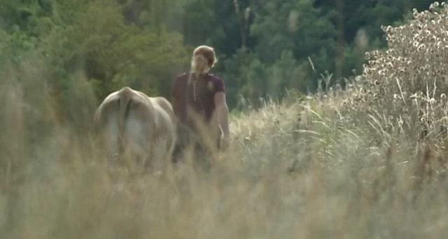Déserts: les vétérinaires quittent les campagnes