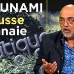 Pierre Jovanovic: «Un TSUNAMI de fausse monnaie !» – TVLibertés: Politique et Éco n°229