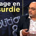 Pierre Jovanovic – Taux négatifs, assurance-vie, banques: voyage en absurdie ! – TVLibertés: Politique et Éco n°237