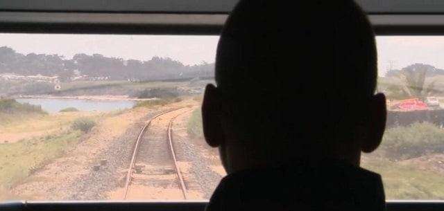 La SNCF doit encore supprimer des emplois, selon un rapport de la Cour des comptes.