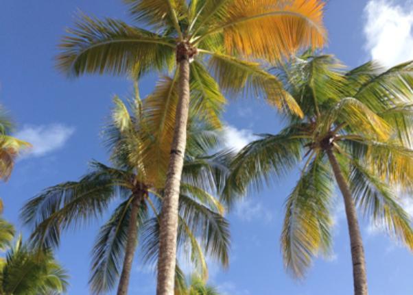 Liste noire et paradis fiscaux, on re-re-re-recommence…