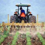 Le nombre d'agriculteurs a été divisé par 4 en 40 ans en France