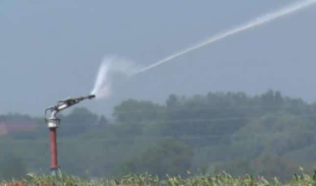 Agriculture: le retour de la sécheresse ! Les récoltes souffrent déjà de la chaleur.