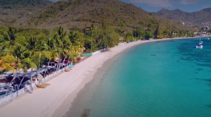Un été sans touristes en Martinique ! Dès la rentrée, les faillites pourraient se multiplier !!