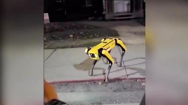 VIDÉO CHOC ! Un Chien Robot patrouillant en pleine nuit !!! Ah, les années à venir...