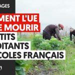 Comment l'Union Européenne laisse mourir les petits exploitants agricoles Français