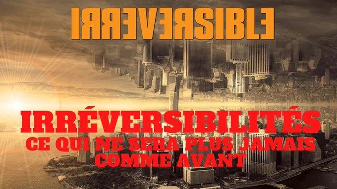 irreversible-charles-sannat