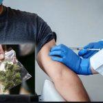 Pas le moral en ce moment ? Allez à Washington, c'est la fête… Un sac de cannabis gratuit contre un vaccin… Le paradis sous l